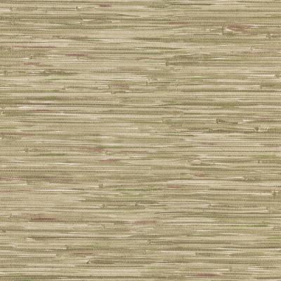 Olive Grasscloth Wallpaper at Menards®