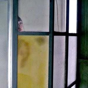 Ksenia Solo in Lost Girl