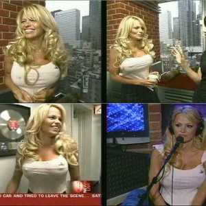 Pamela Anderson in The Howard Stern Show