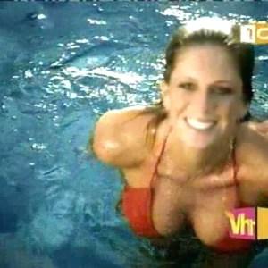 Rachel Hunter in Stacy's Mom Video
