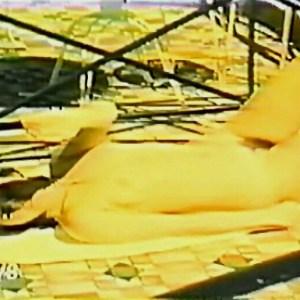 Susan Hemingway in Elles font tout