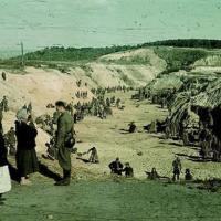 Експертна історична довідка про вбивць Бабиного Яру