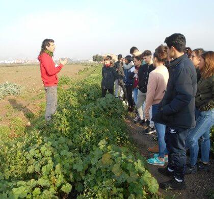 Colaboramos en un proyecto de Aprendizaje y Servicio con el Instituto Montjuïc