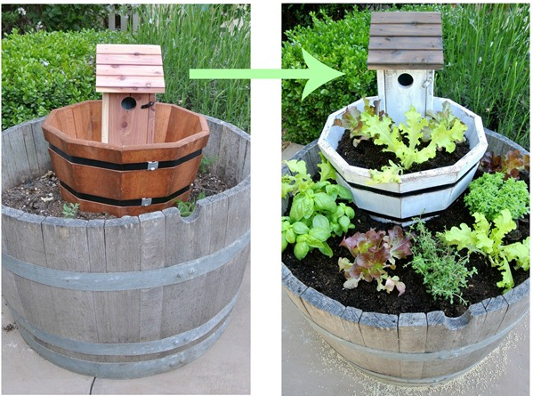 planter before and after