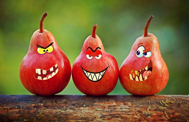 pears-1263435_640