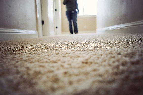 CarpetSteaming.jpg