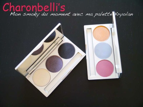 Mon smoky du moment avec ma palette Kryolan (1) - Charonbelli's blog beauté
