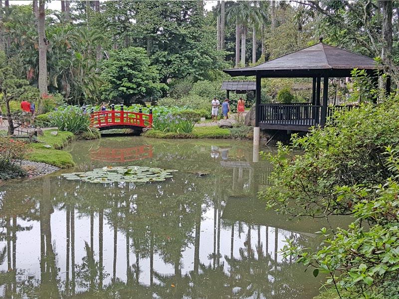 visiter-rio-jardin-botanique9-charonbellis