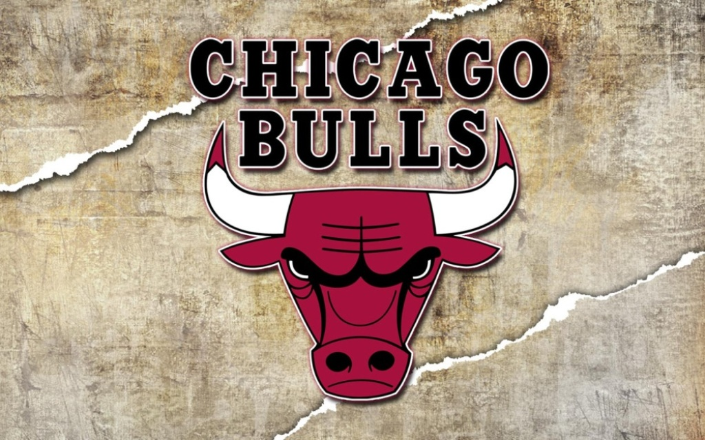 Chicago bulls 1