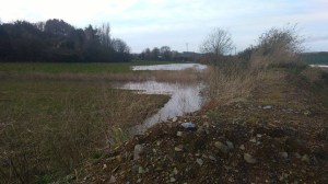 Storm Frank Dec 2015 field flood