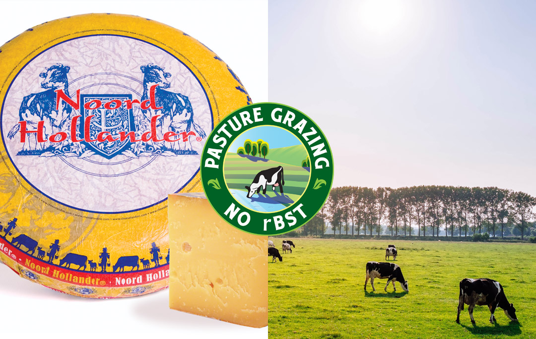 Noord Hollander Aged Gouda Grass Fed