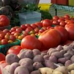 famers-market_market veggies