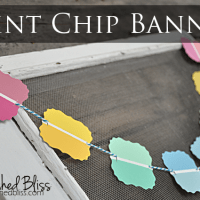 Paint Chip Banner {Lifestyle Crafts}