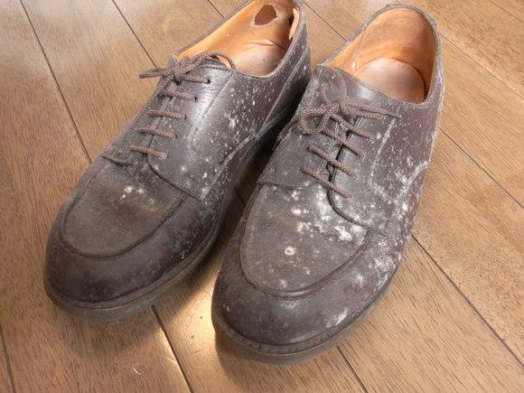 革靴のカビ