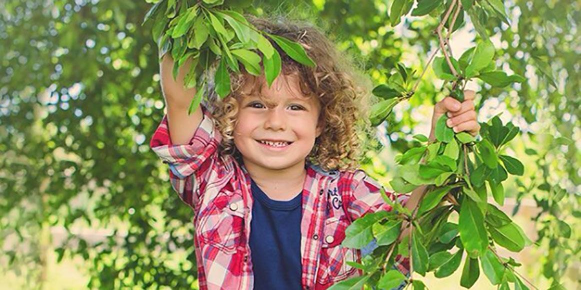 boy_leaves