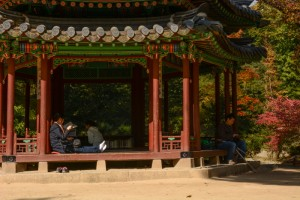 Changdeokgung Palace 04