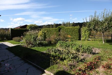 swedish-community-garden-plot-6