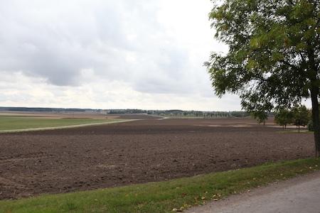 swedish-countryside-3-1