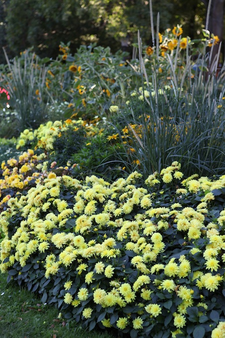 colorblock-gardens-at-stockholm-djurgarten-2