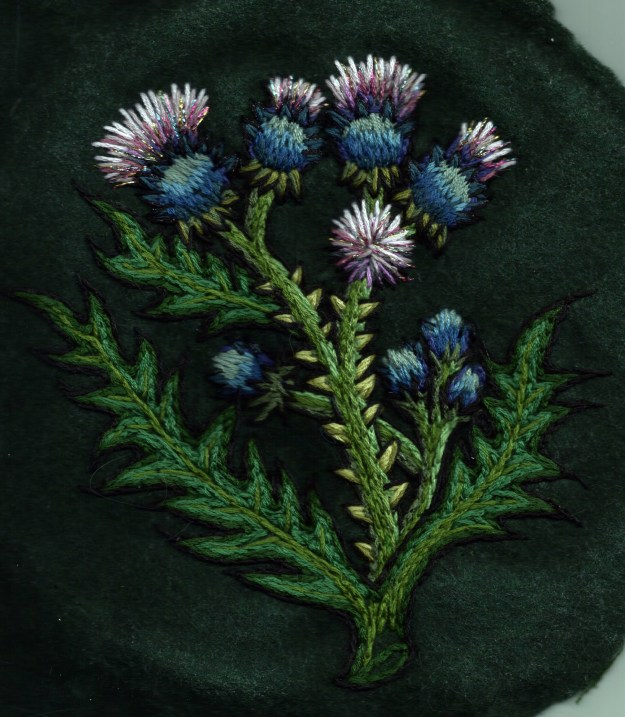 Thistle by Suzanne Forbes Jan 27 2016
