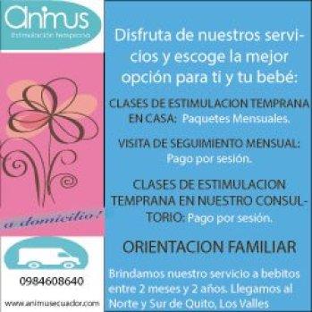 servicios-animus 1