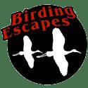 Birdwatching Costa Rica