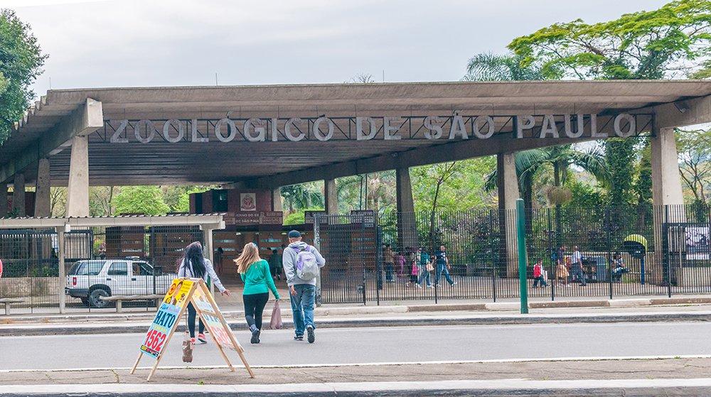 Zoológico de São Paulo abre as portas de seus bastidores nas férias