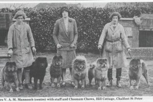 One of the greats of the Chow breed in England in the 1920, Mrs. Mannooch of the Choonam Kennels