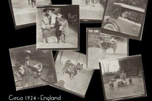 1920s dog breeder england 8 pix collage