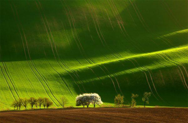 Photos de la création de Dieu et textes qui vous donneront envie de Le louer...    Landscape-photography-10-e1476587275349
