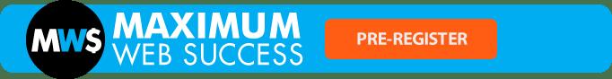 Maximum website success