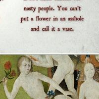 Putting a flower in an arsehole and calling it a vase