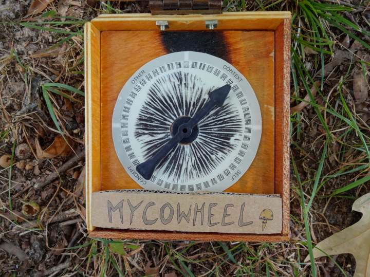 Mycowheel Close 1