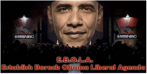 establish barack obama liberal agenda
