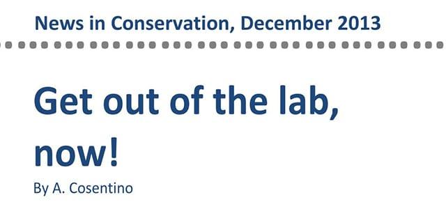 antonino cosentino news in conservation