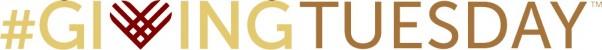 GT Logo (CDM 01)