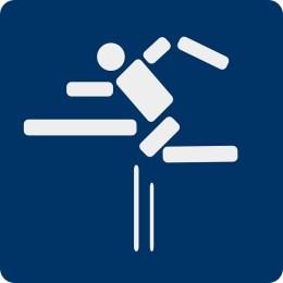 hurdles-150490_640
