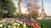 william-holdman-eiffel-tower-with-spring-flowers-paris-france