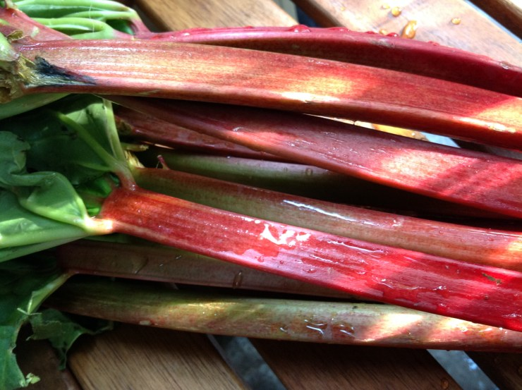 is rhubarb a fruit or vegetable is an olive a fruit