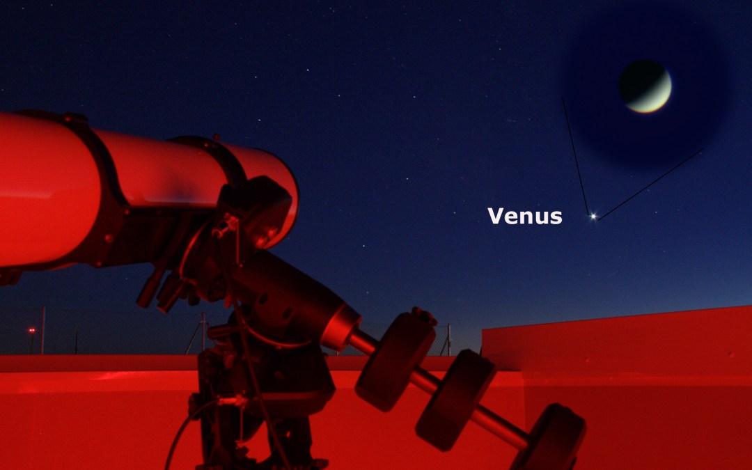 Venus brillando en el horizonte