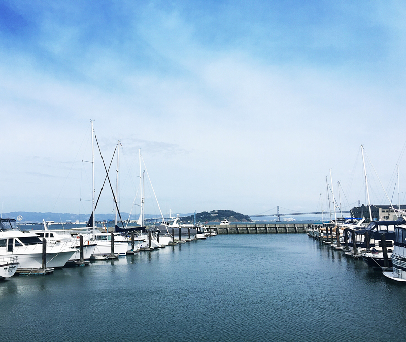 San-Francisco-Travel-Guide-Pier-39