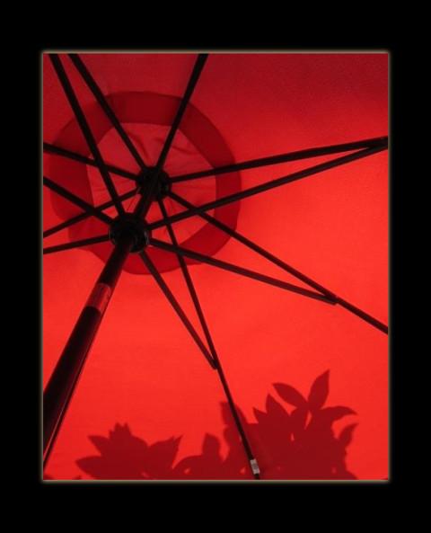 August 14, 2014 - Spanish shadows in Marbella