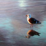Gull • Available at Susan Powell Fine Art