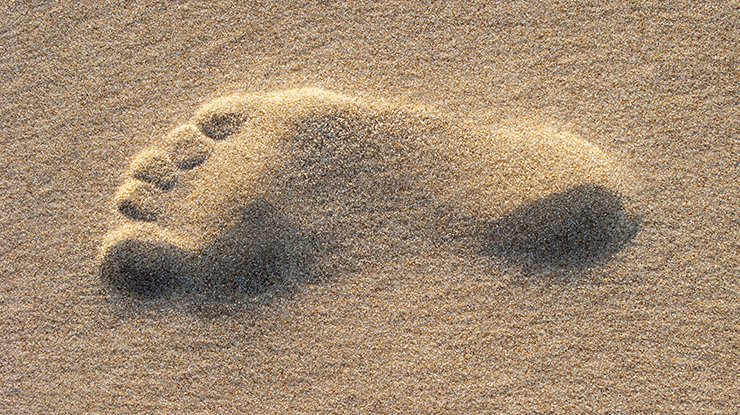 How to Create Your Digital Footprint