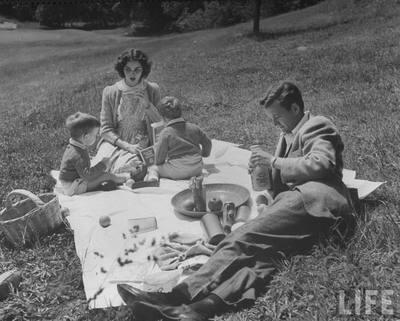 picnic_life.jpeg