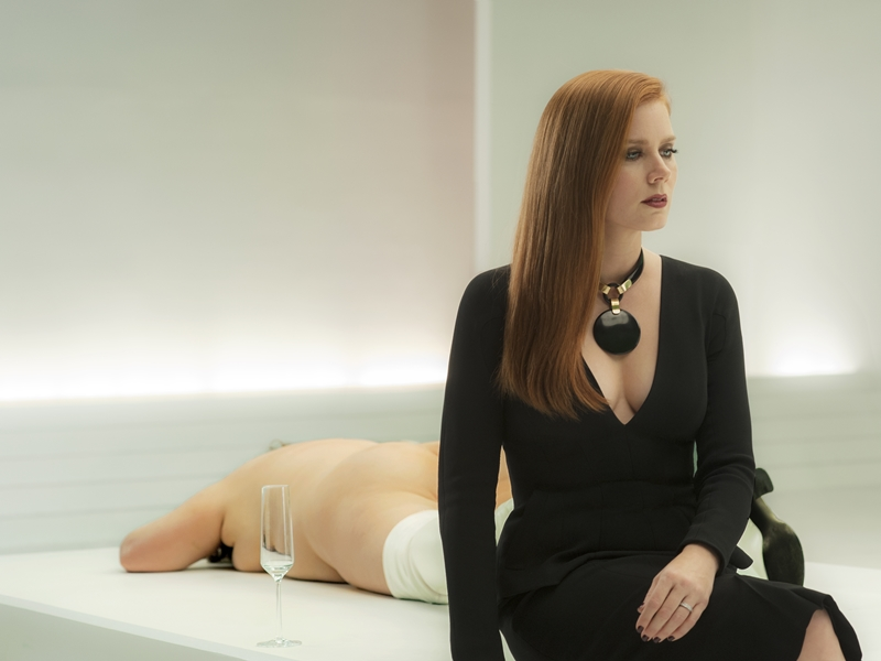 Animais Noturnos (Nocturnal Animals)