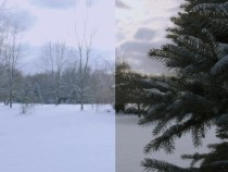 RED Scarlet X a HDRx Test & not a GH2 insight:
