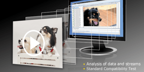 Nikon HEVC:H.265 Codec Analyzer