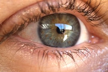 What Took You So Long to experiment with the iPhone5s iPro Lens System