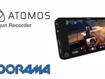 Atomos Shogun: Product Update with Daniel Norton